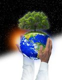 Respect earth. The earth with a tree is being held high by a man's hands.  He has a white shirt on to project the business world in partnership with helping save Stock Images