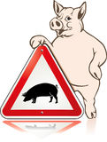 Respect pig. Hygiene illness, influenza Stock Images
