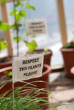 Respect the plants Royalty Free Stock Image