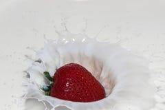 Respingo da morango no preto Imagens de Stock Royalty Free
