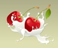 Respingo do leite com cereja Foto de Stock Royalty Free
