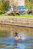 Respingo do verão Imagem de Stock Royalty Free