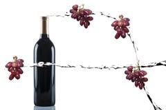 Respingo do vinho fotografia de stock