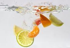 Respingo dos citrinos fotografia de stock royalty free