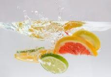 Respingo dos citrinos fotos de stock royalty free