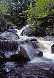 Respiração que toma a natureza, scenicwaterfall Fotos de Stock Royalty Free