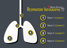 Respiratory Infographic . Flat design . Vector Stock Photography