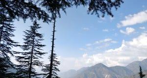 Respire la frescura en montaña y bosque foto de archivo libre de regalías
