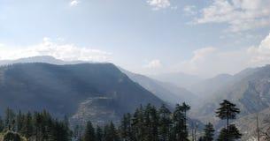 Respire la frescura en montaña y bosque foto de archivo
