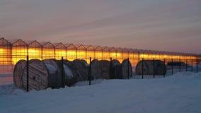 Resplandor de los invernaderos en el fondo de la puesta del sol almacen de video