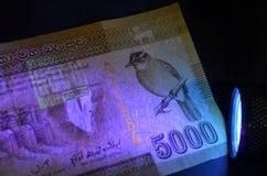 Resplandor del billete de banco debajo de ULTRAVIOLETA Imagen de archivo