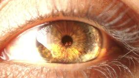 Resplandores del fuego dentro del iris del ojo humano almacen de video
