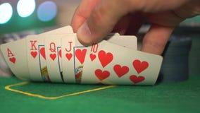 Resplendor real, cartões do pôquer vídeos de arquivo