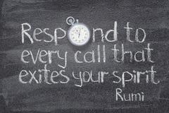 Responde el alcohol Rumi imagenes de archivo