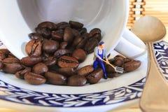 Responsabile dei chicchi di caffè Immagini Stock