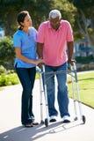 Responsable aidant l'homme aîné avec la trame de marche Photos stock