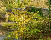 Respryn bro över den Fowey floden Royaltyfri Bild