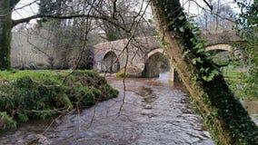 Respryn Przerzuca most, Mediæval bridżowy rozciągający się Rzecznego Fowey w parafii Lanhydrock Zdjęcia Stock