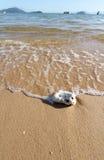 Ressac d'océan photographie stock
