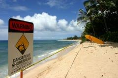 Ressaca do Lifeguard fotografia de stock royalty free