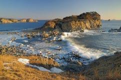 Ressaca do mar do inverno Imagens de Stock