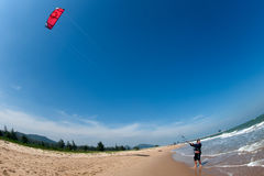 Ressaca do papagaio ou placa do papagaio, esporte de água Foto de Stock
