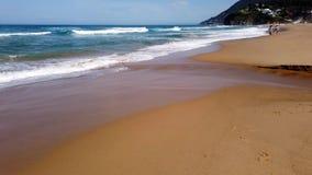 Ressacs Pacifiques sur la plage de c?te sud de NSW, Australie banque de vidéos