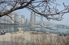 Ressort à Dalian photographie stock