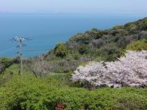 Ressort à la mer de Shiranui Photo libre de droits