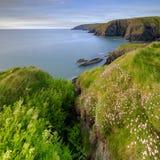 """Ressort égalisant la lumière roses de mer sur épargne """"dans la baie de Ceibwr, Pembroke, Pays de Galles photos libres de droits"""