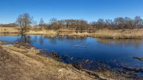 Ressort, avril, rivière bleue, grands arbres, réflexions photos stock