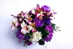 Ressort bienvenu - groupe de fleurs de ressort photo libre de droits