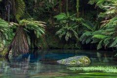 Ressort bleu, piscine bleue renversante images stock