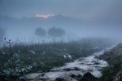 ressort, brouillard, eau et neige tôt Photos stock
