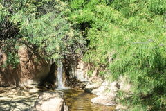 Ressort d'eau Image libre de droits