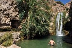 Ressort d'Ein Gedi - Israël Image libre de droits