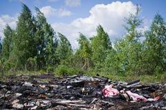 Ressort dans la forêt russe image libre de droits