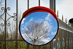 Ressort dans le miroir Photographie stock