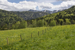 Ressort dans les montagnes Photographie stock libre de droits