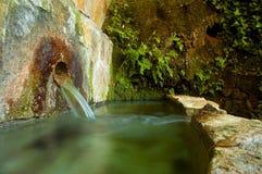 Ressort de fontaine avec des usines dans la montagne photos stock