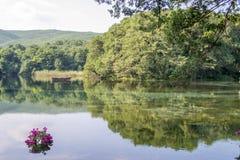 Ressort de lac Images libres de droits