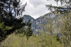 Ressort de montagne Images libres de droits