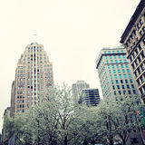 Ressort de New York City Photographie stock