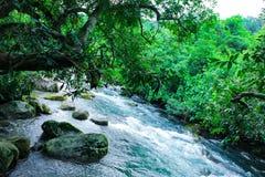Ressort de Nuoc Mooc - le courant Phong Nha KE de Mooc frappent le parc national photo libre de droits