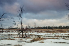 Ressort de paysage avec l'étang Photos libres de droits