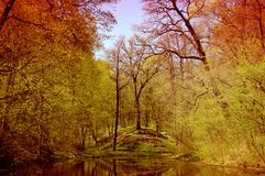 Ressort de rivière image libre de droits