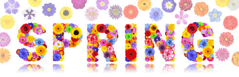 Ressort de Word fait de fleurs colorées d'isolement Image stock