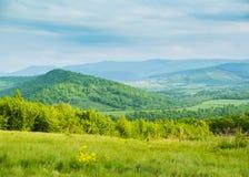 Ressort en montagnes Clairière des fleurs de ressort et des montagnes bleues Photo libre de droits