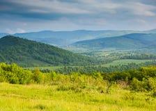 Ressort en montagnes Clairière des fleurs de ressort et des ountains bleus Photo stock