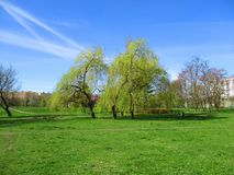 Ressort en parc image stock